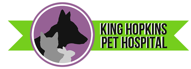 King Hopkins Pet Hospital